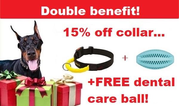 free dog ball