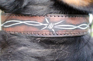 Designer Dog Collars for Swiss Mountain Dogs with Hand-Painting