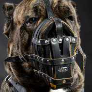 Cane Corso Muzzle Royal Padded | Large Leather Dog Muzzle
