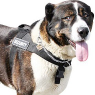 Large Dog Harness for Caucasian Shepherd | Stop Dog Pulling Tool