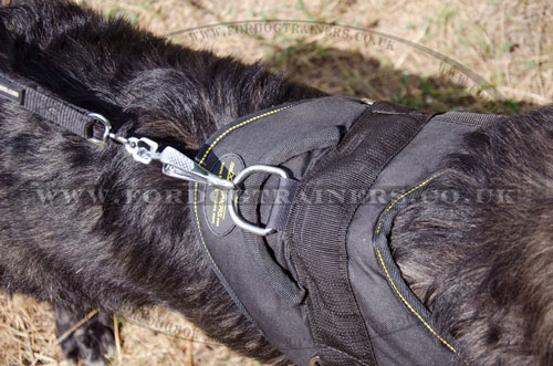 large dog pulling harness for Caucasian Shepherd