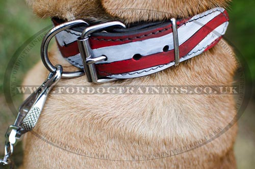 Bright Dog Collars for Chinese Shar Pei Dogs