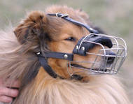 Wire Basket Dog Muzzle for Collie and similar dog breeds