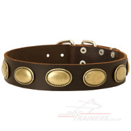 Designer Dog Collar with Vintage Retro Decoration