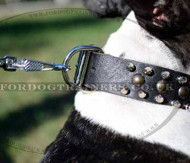 Designer Dog Collars for Bull Terriers | Spiked Dog Collars a