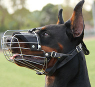 Doberman Dog Muzzle UK | Basket Muzzle for Doberman
