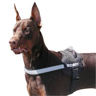 Nylon Dog Harness for Doberman with reflective strap UK