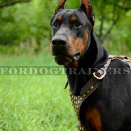 Leather Dog Harness with Brass Studded Decor for Doberman