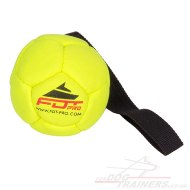 Interactive Dog Toy Ball With Handle For Small And Middle Dogs 3 In Diameter