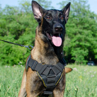 Dog Belgian Malinois Harness | Dog Harness with Handle for Sale