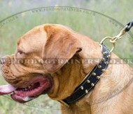 Dog De Bordeaux Leather Dog Collar | Dog De Bordo Collar Spiked