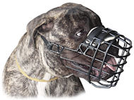 Bullmastiff Muzzle, Rubber-Coated Wire | Muzzle for Bullmastiff
