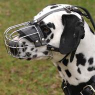 Dalmatian Muzzle Basket Type | Dalmatian Size Dog Muzzle