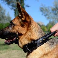 German Shepherd dog collar with handle | Leather dog collar