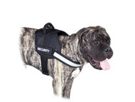 Large Dog Harness for Bullmastiff | Bullmastiff Harness Nylon