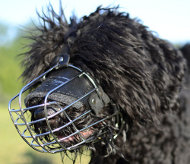 Black Russian Terrier Wire Muzzle
