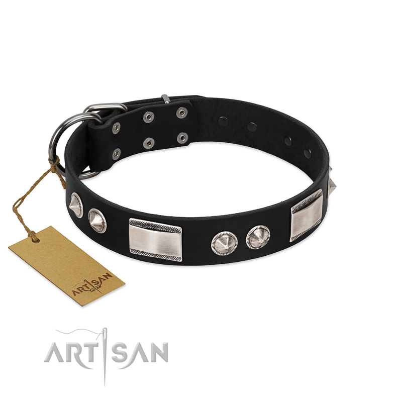 Black Dog Collar with Brooches and Plates