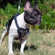 French Bulldog Harness Small | Spiked Dog Harness for Small Dog