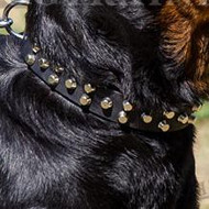 Quality Leather Collar with Pyramids for German Rottweiler