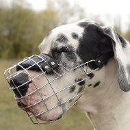 Wire Basket Dog Muzzle for Great Dane - Large dog muzzle