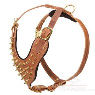 Royal Style of Walking Dog Harness with Golden Spikes