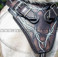 Original Hand-Painted Dog Harness for Husky