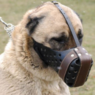 K9 Muzzle for Large Dogs | Caucasian Shepherd Training Muzzle