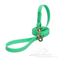 NEW! Green Dog Lead Super Strong Biothane