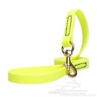 Yellow Biothane Dog Lead