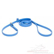 Blue Dog Collar and Leash 2 in 1