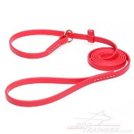 Red Dog Collar and Leash 2 in 1
