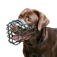 Wire Dog Muzzle for Labrador Rubberized | Winter Training Muzzle