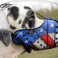 Large Dog Muzzle for Great Dane, Painted | Great Dane Muzzle K9