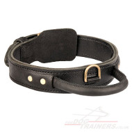 Best Leather Dog Collar XL | Agitation Dog Collar with Handle