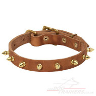 Spiked Leather Dog Collar | Small Dog Collar
