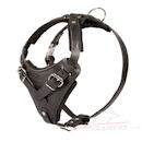 agitation leather dog harness