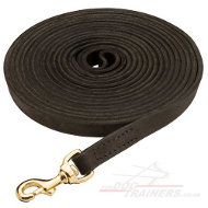 Long Leather Lead for Dog Training and Tracking (2 cm wide)