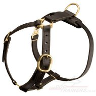 Large Luxury Dog Harness UK Best Quality