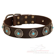 Modern Dog Collar with Blue Stones | Leather Dog Collar