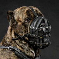 Leather Dog Muzzle Cane Corso | Best Dog Muzzle For Cane Corso