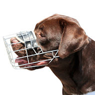 Labrador Muzzle Wire Basket | Best Dog Muzzle UK for Lab