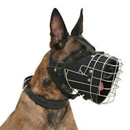Fully padded hard dogs working wire muzzle for Malinois