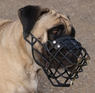 Boerboel Mastiff wire dog muzzle covered by black rubber, UK