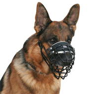 German Shepherd wire dog muzzle covered by black ruber