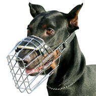 Dog Muzzle UK Bestseller | Doberman Muzzle Best Choice