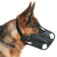 German Shepherd hard leather working muzzle