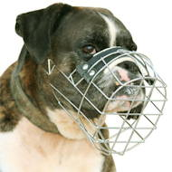 Wire Dog Muzzle for Boxer | Boxer Muzzles from the Producer
