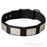 Nylon Dog Collar With Vintage Plates