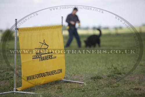 Owner's Personality is a Key Factor for Dog Education