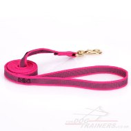Durable Pink Cute Dog Leash For Strong Dog Walking And Training